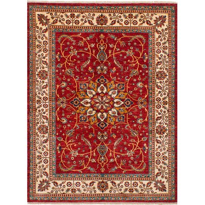 Castellanos Floral and Plants Hand Knotted Wool Red Area Rug