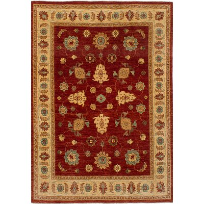 Charlena Hand-Knotted Wool Dark Copper Indoor Area Rug