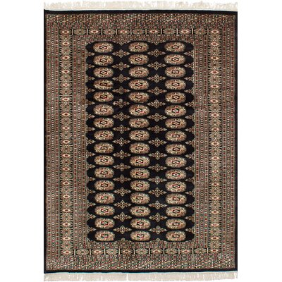 One-of-a-Kind Olney Springs Hand-Knotted Wool Dark Navy Area Rug