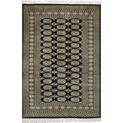 Olney Springs Hand-Knotted Wool Dark Navy Indoor Bordered Area Rug