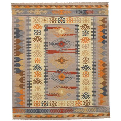 Pavlatka Kilim Hand-Woven Wool Light Gray/Yellow Area Rug Rug size: Rectangle 8 x 10