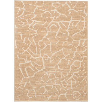 Raftery Tan Area Rug Rug Size: Rectangle 56 x 79