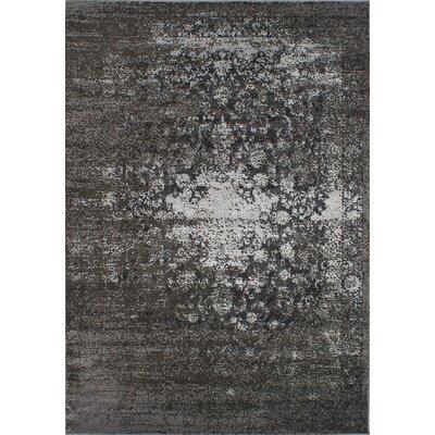 Loyd Dark Gray Area Rug