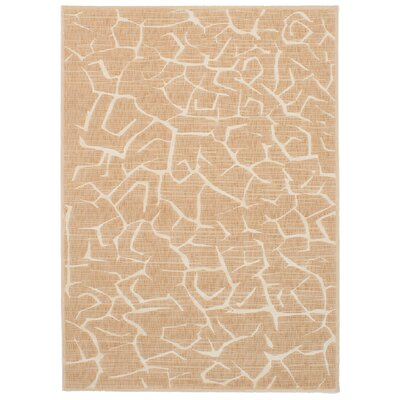 Raftery Tan Area Rug Rug Size: Rectangle 55 x 78