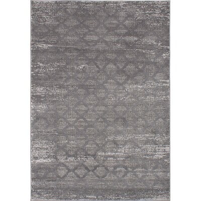 Finian Gray Area Rug