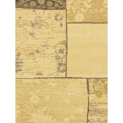 Summer Medley Cream/Light Grey Open Field Area Rug Rug Size: 55 x 79