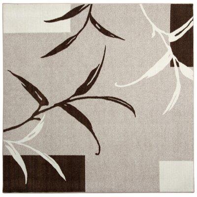 Kazumi Brown/Cream Area Rug Rug Size: Square 6