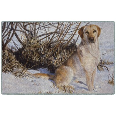 Tews Chilly Dog Brown/White Area Rug Rug Size: Rectangle 18x210