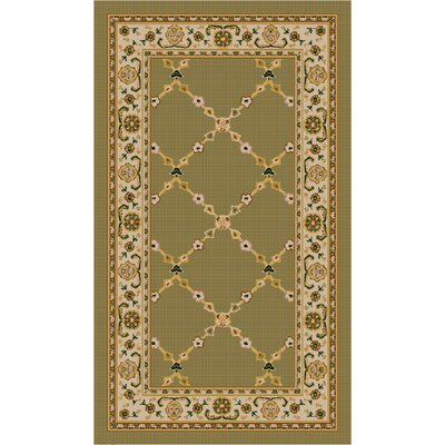 Premier Mint Green Area Rug Rug Size: 18 x 210