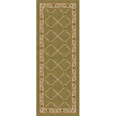 Premier Mint Green Area Rug Rug Size: Runner 11 x 5