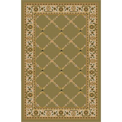 Premier Mint Green Area Rug Rug Size: 26 x 310