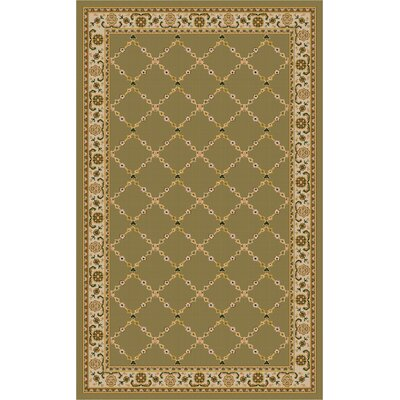 Premier Mint Green Area Rug Rug Size: 33 x 54