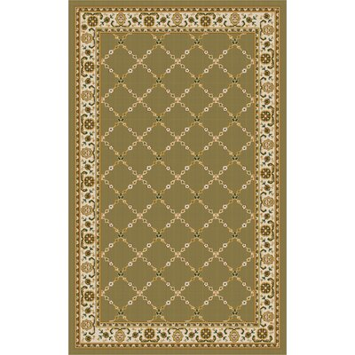 Premier Mint Green Area Rug Rug Size: 5 x 8