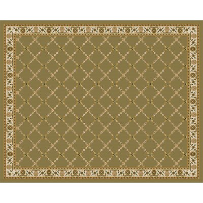 Premier Mint Green Area Rug Rug Size: 8' x 10'
