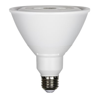 19W E26 LED Light Bulb