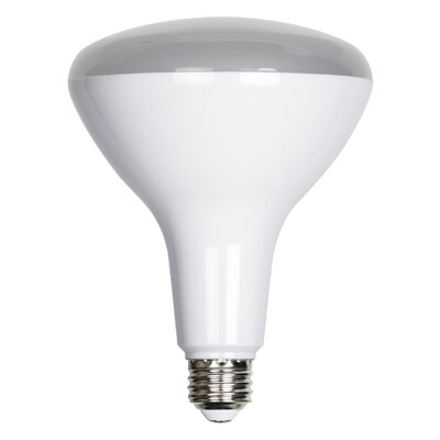 17W E26 LED Light Bulb