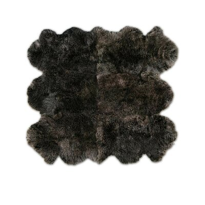 Patagonia Sheepskin Organic Brown Raccoon Area Rug Rug Size: 65 x 75