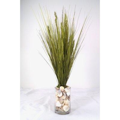Spring Additions Dune Grass In Round Glass Vase