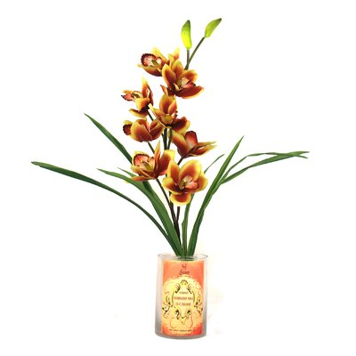Spring Additions Cymbidium Orchid In Decoupage Bottle