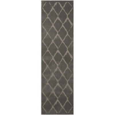 Gleam Gray Area Rug Rug Size: Runner 22 x 76