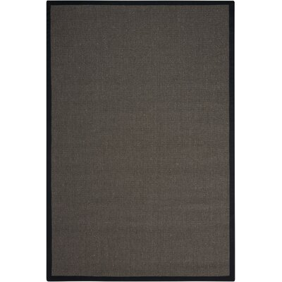 Brilliance Charcoal Area Rug Rug Size: 4 x 6