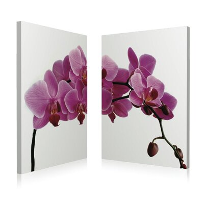 "Pink Orchid 2 Piece Framed Photographic Print Set Size: 28"" H X 20"" W X 1"" D"