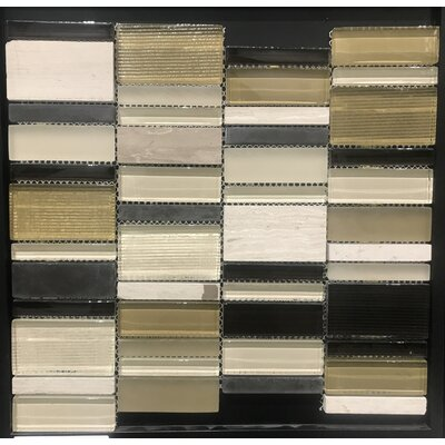 Rio 12 x 12 Natural Stone Mosaic Tile in Taupe/Black