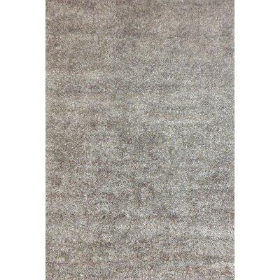 Atchley Silver Shag Rug Rug Size: 5 x 8