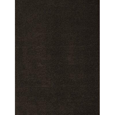 Justine Black Area Rug Rug Size: 53 x 76