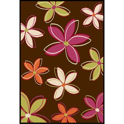 Walnut Chocolate Area Rug Rug Size: 53 x 76