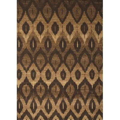 Hilaire Brown Area Rug Rug Size: 53 x 76