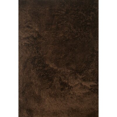 Yan Hand-Woven Polyester Chocolate Indoor Area Rug Rug Size: Rectangle 8 x 10