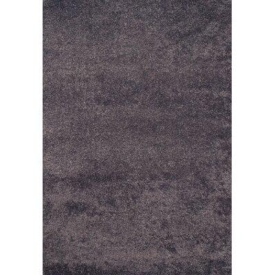 Lionel Slate Blue Area Rug Rug Size: 53 x 76
