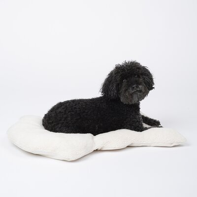Pop Plush Lounge Mat Dog Bed Size: Small, Color: Black
