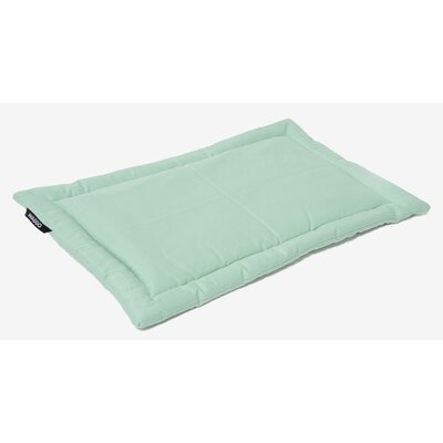 Dog Mat Size: Small (19.75 W x 26 L), Color: Mint