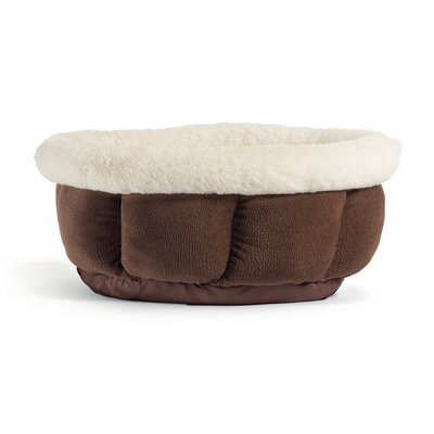 Cuddle Cup Ilan Bolster Color: Dark Chocolate