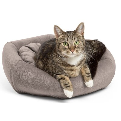 4-in-1 Kitty Pouch-Cuddler Color: Gray
