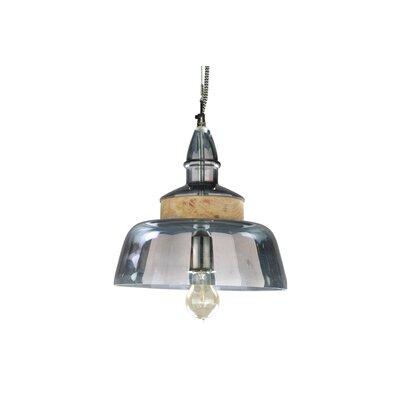 Spectrum 1-Light Bowl Pendant