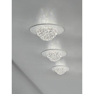 Bool Light Spotlight