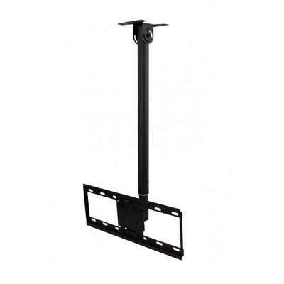 Swivel/Tilt Ceiling Mount for 32 - 60 Screens