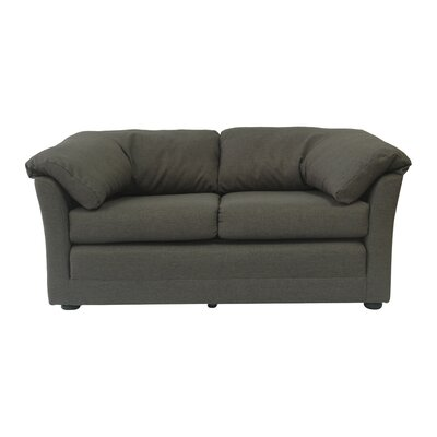 Cozy Ultra Lightweight Sleeper Sofa Upholstery: Charcoal