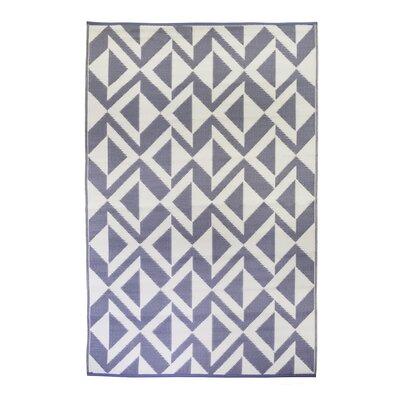 Premier Home Hand-Woven Indigo/White Indoor/Outdoor Area Rug