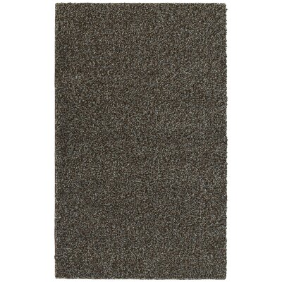 Southpointe Shag Area Rug Rug Size: 4 x 6