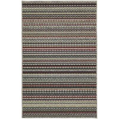 Carnival Stripe Area Rug Rug Size: 5 x 7