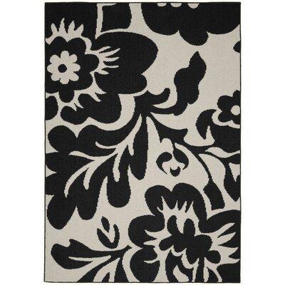 Floral Garden Black/Ivory Area Rug Rug Size: 8 x 10