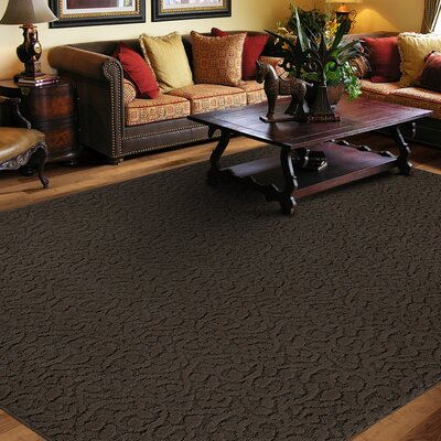 Edith Chocolate Rug Rug Size: 12 x 18