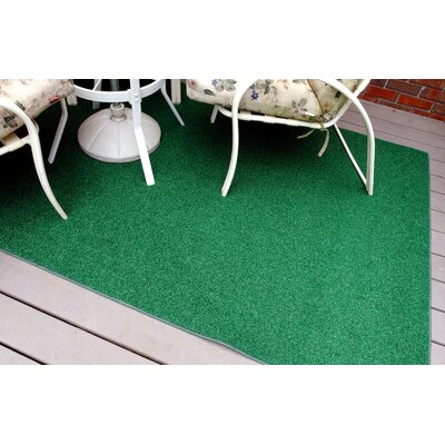 Janis Green Indoor/Outdoor Area Rug Rug Size: 4 x 6