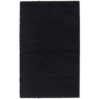 Black Southpointe Area Rug Rug Size: Rectangle 76 x 96