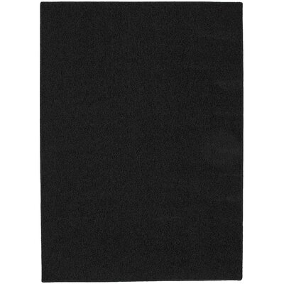 Blackest Black Shazaam Area Rug Rug Size: 5 x 8