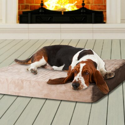 Memory Foam Dog Bed with Removable Cover Size: Extra Large - 46 L x 27 W